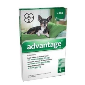 PIPETA ADVANTAGE PERRO  1.5 A 4 KG Advantage Antipulgas y Garrapatas